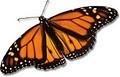 Monarch Therapeutic Massage