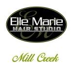Elle Marie Hair Studio - Mill Creek